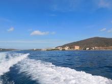 Asinara 2017